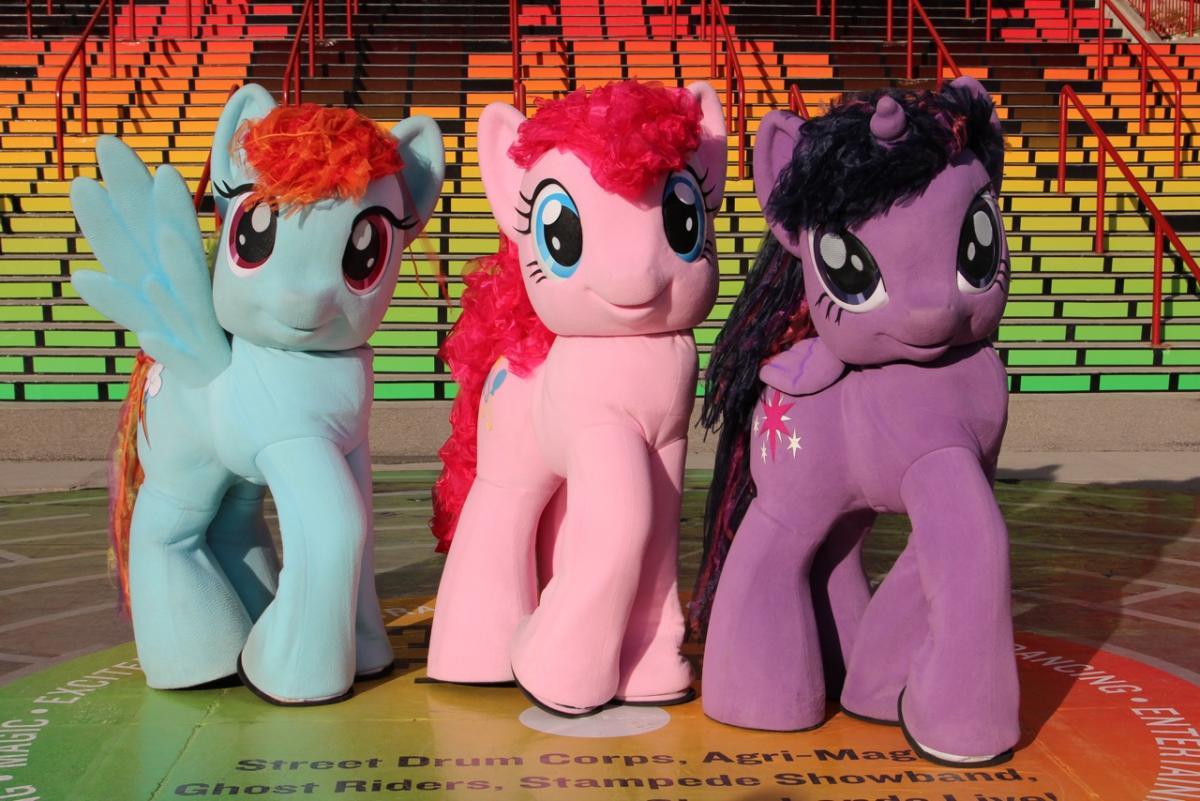 Live Pony Gallery