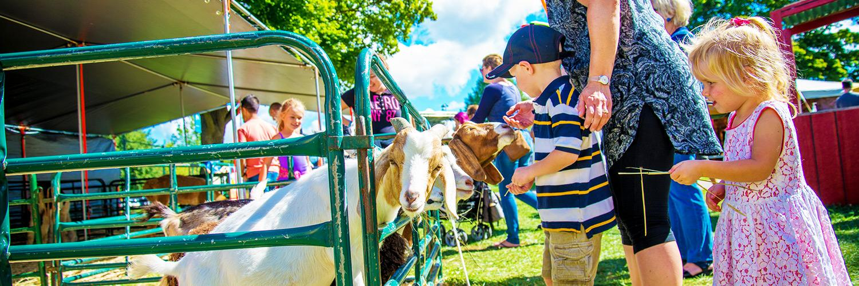 Western Fair: Feeding the goat