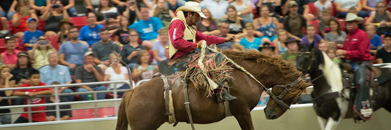 westernfair2017 rawhide rodeo