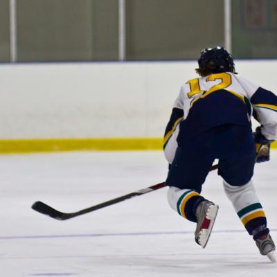 womens hockey summary image