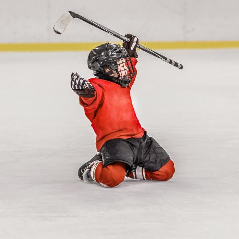Youth Hockey League