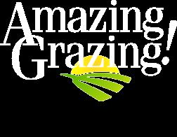 Amazing Grazing Logo