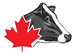Holstein Canada Logo
