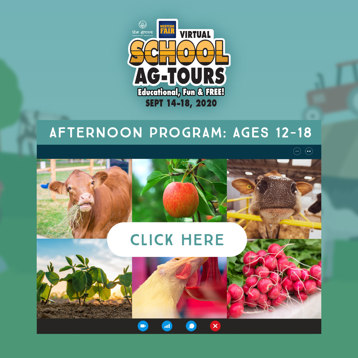 School Ag-Tours: Afternoon Program: Ages 12-18 - Click Here