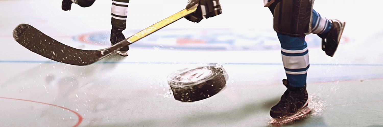 Adult Hockey Programs