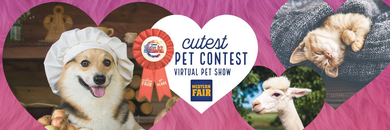Cutest Pet Contest