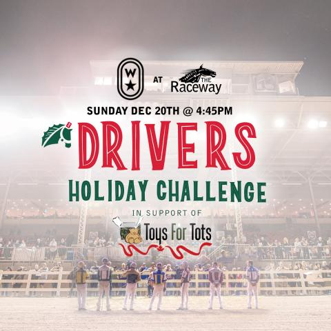 Drivers' Holiday Challenge