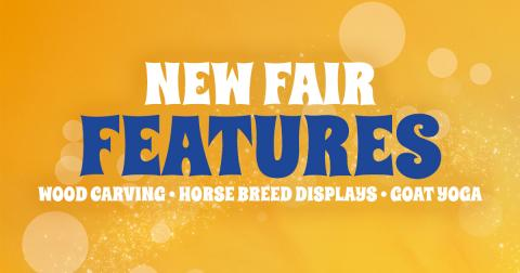 Fair Features