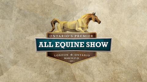 All Equine Logo