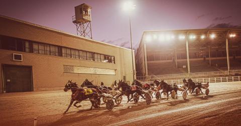 The Raceway